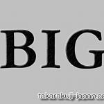 楽天totoでBIG1000を購入(5/30,31)